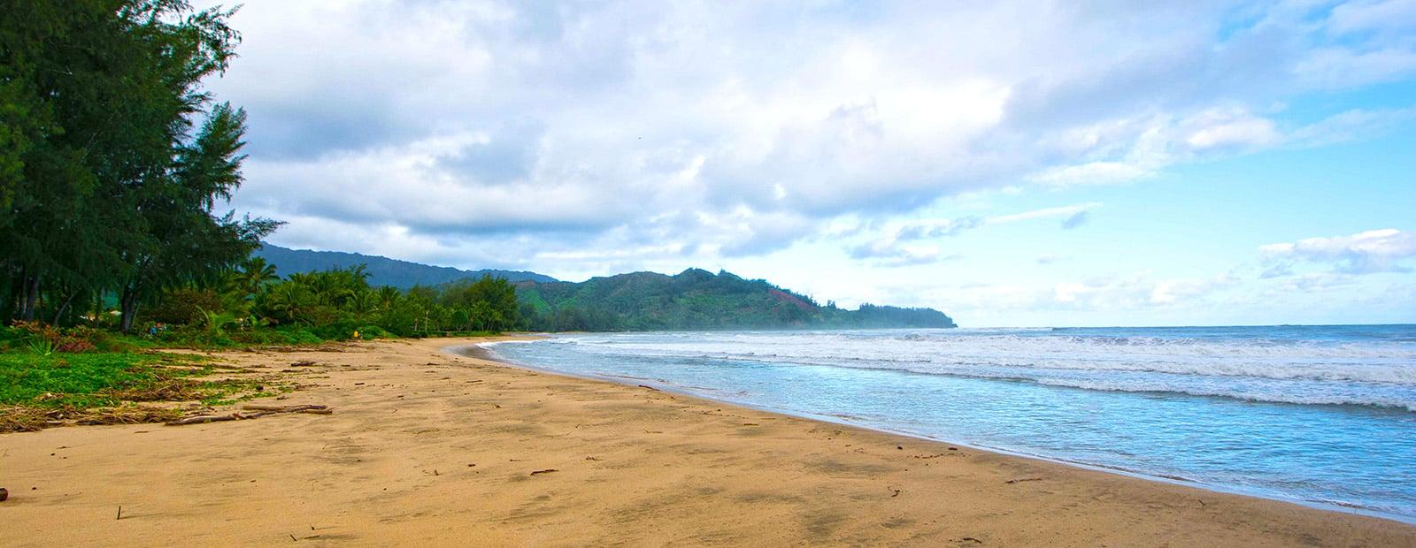 Kauai Ultimate Visitor Guide